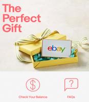 Check-ebay-balance-t