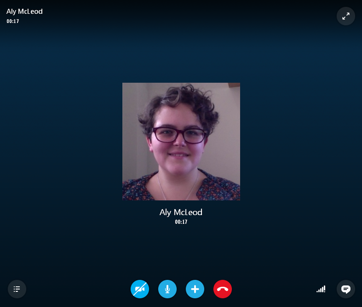 Skype Call Screenshot