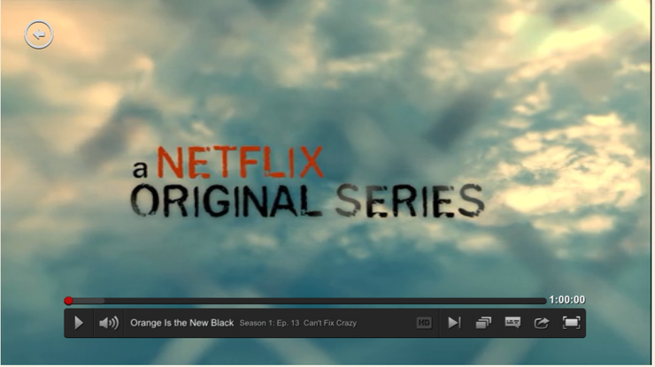 Watch Netflix on Computer Screenshot