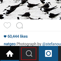 Instagram Explore icon