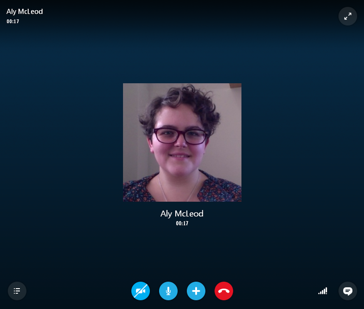 The Skype voice and video call interface
