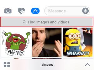 GIF search bar