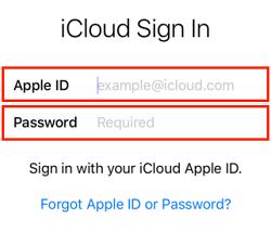 Apple ID sign in screen