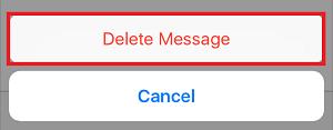 Delete Message button