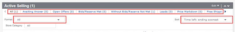 Filter eBay Active Listing