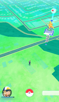Map in Pokemon Go