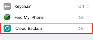 iPhone Backup settings