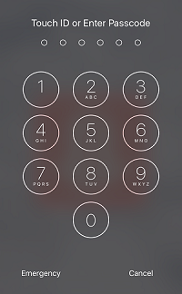 Passcode lock entry to iPhone