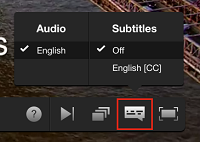 Subtitle settings button
