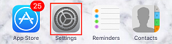 iPhone settings app icon