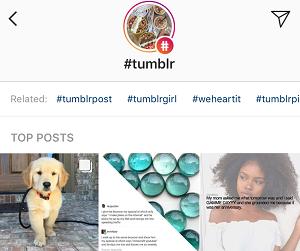 Tumblr media tag